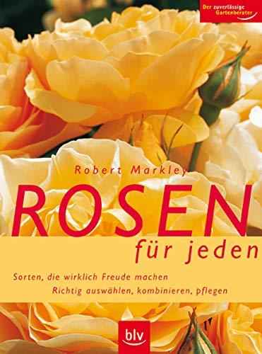 Rosen und besten