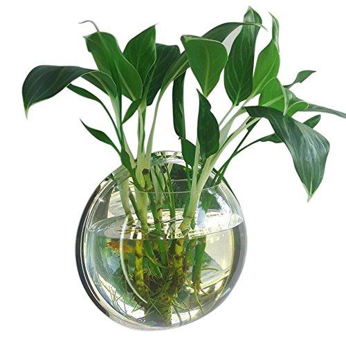 29.5 cm Durchmesser Clear Style Acryl Runde Wall Mount hängenden Fisch Schüssel Tank Blume Pflanze Vase Home Dekoration (Wand-fisch-schüssel)