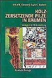 Holzzersetzende Pilze in Bäumen: Strategien der Holzzersetzung (Rombach Wissenschaft Ökologie) - Francis Schwarze