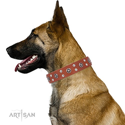 FDT Handwerker 4doggies Hundehalsband, Leder mit Fake Silber Decor–
