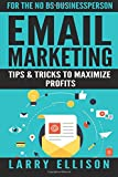 Email Marketing: Tips and Tricks to Maximize Profits: Volume 2
