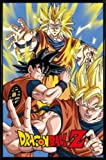 1art1® Dragonball Z Poster et Cadre (Plastique) - Goku (91 x 61cm)