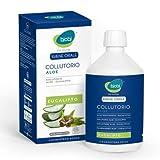 Bjobj Colutorio Aloe Vera y Eucalipto - 500 ml