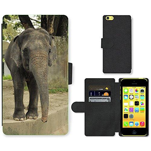 Grand Phone Cases PU LEDER LEATHER FLIP CASE COVER HÜLLE ETUI TASCHE SCHALE // M00140645 Elephant Zoo-Tier-Säugetier Wilde // Apple iPhone 5C