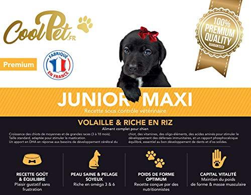 Coolpet Junior Trockenfutter für Hunde, Maxi, 10 kg