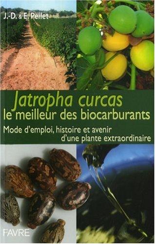 Jatropha Curcas le meilleur des biocarburants : Mode d'emploi, histoire et devenir d'une plante extraordinaire par Jean-Daniel Pellet
