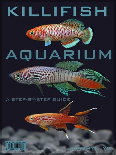 Killifish Aquarium, A Step-By-Step Guide (English Edition)