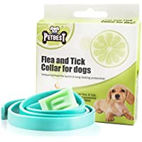 Best Tick Collar for Small, Medium and Large Dogs, Waterproof, Natural Flea And Tick Protection Effective Protection Against Fleas