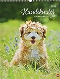 Hundekinder Posterkalender - Kalender 2019