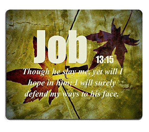 bible-versets-citation-job-13-15bien-que-he-slay-me-mais-sera-i-hope-en-je-lui-sera-srement-protger-