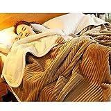 Super Weich Duplex Decke,Schnappen Sie Sich Teppich Die Sherpa Warm Fluffy Gemütlich Luxus Superfine Faser Bett Sofa Decke Doppelbett Queensize-bett Kingsize-bett Alle Jahreszeiten Pflegeleicht-D 180x200cm(71x79inch)