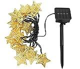 Best Outdoor String Lights - Citra Metal Golden Star Solar String Lights Diwali Review