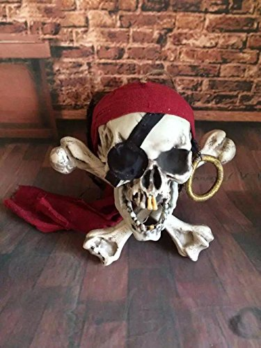 opf Stützen Ornamente High Grade Adsorption Materialien Menschliche Skala Horror Szene 0.5kg (Halloween-make-up-skalen)