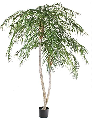 2 x Künstliche Phönix Palme Panchali, grün, uv-sicher, 225 cm – Kunstpalme/Deko Palme