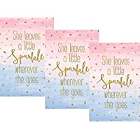 Pack of 3 Large Little Sparkle Scented Sachets