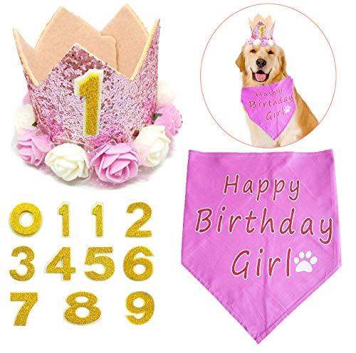 BIPY Pink Krone Hund Geburtstag Hat, für Mädchen Kleine Medium Große Hunde Katzen Schweine Sheeps Kaninchen mit 0-9Charms Wiederverwendbar (Schwein Kostüm Für Große Hunde)