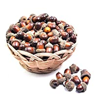 SODIAL 20pcs Artificial Acorns for Autumn Display Wedding Party Holiday Miniature Garden Candy Boxes Bag Venue Decoration Craft DIY