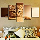 Kent Bailey Decoracion Living Wall Art HD Grabados 5 Piezas Animal Gato Precioso Poster de Tela