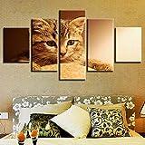 Kent Bailey Decoracion Living Wall Art HD Grabados 5 Piezas Animal Gato Precioso Poster de Tela