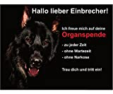 Hundeschild Schäferhund Türschild Metall Schwarz 20x15 cm Vorsicht Achtung Hund Schild Warnung Warnschild Warnzeichen Lustig