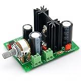 Electronics-Salon Mono 10W Audioverstärker-Modul, basierend auf TDA2003 A. für Car Radio etc.