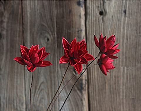 Berry President® Natural Dried Lotus Flower Bundle Bunch Pack of 3 Stems (Red)