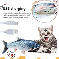 99AMZ Catnip Fish Toys for Cat, Interactive Toys With Catnip for Cats, Simulation Electric Wagging Fish Toy With Zipper, Chew Toys for Cat, Safe Soft Texture Plush Toys (A)