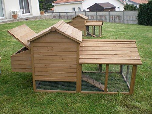 poulailler ideal 2 a 4 poules enclos 9m2 droles d 39 animaux. Black Bedroom Furniture Sets. Home Design Ideas