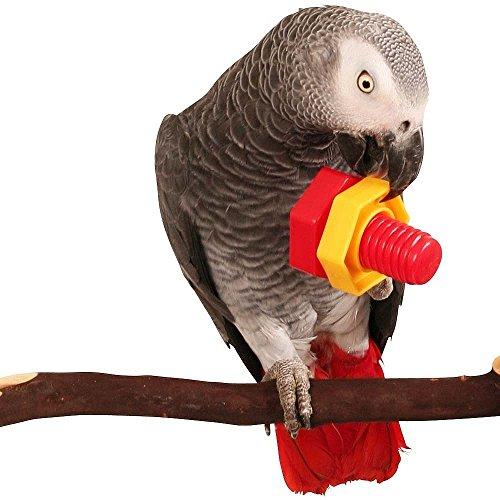 Jumbo Nut & Bolt Puzzle Parrot Toy-Confezione da 2