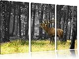 röhrender Hirsch im Wald schwarz/weiß 3-Teiler Leinwandbild 120x80 Bild auf Leinwand, XXL riesige Bilder fertig gerahmt mit Keilrahmen, Kunstdruck auf Wandbild mit Rahmen, günstiger als Gemälde oder Ölbild, kein Poster oder Plakat