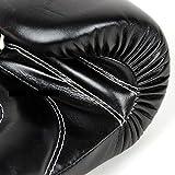 Fairtex Boxhandschuhe BGV14 - Black - Boxhandschuhe MMA Kickboxen Sparring Muay Thai (14oz) für Fairtex Boxhandschuhe BGV14 - Black - Boxhandschuhe MMA Kickboxen Sparring Muay Thai (14oz)