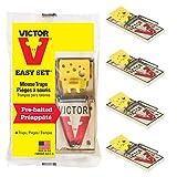 Victor Easy Set Mausefallen (4 Stück) - Vorgeköderte Schlagfallen mit großem Auslösepedal für die Einfache & Schnelle Mäusebekämpfung - Giftfrei und Wiederverwertbar - Mod. M032