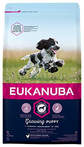 Eukanuba Puppy Welpenfutter für mittelgroße Rassen - Ausgewogenes Trockenfutter mit verbesserter, neuer Rezeptur für Welpen im Alter von 1-12 Monaten in der Geschmacksrichtung Huhn - 1 x 3kg Beutel