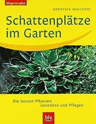 Schattenplätze im Garten: Die besten Pflanzen · Gestalten und Pflegen
