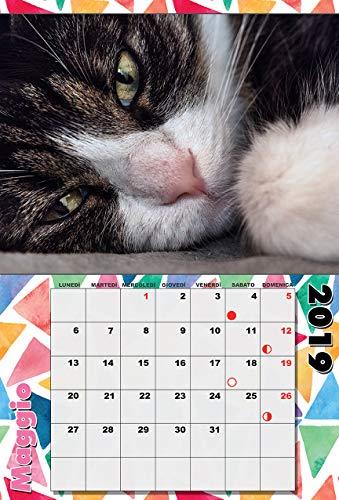 Personalisierter Kalender 2019 für 12 Seiten plus Einband 30x45 mit 1 gebundenen Seiten mit Metallspirale und Wandhaken.