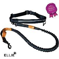 [Gesponsert]ELLIE Premium Jogging Hundeleine mit verstellbarem Bauchgurt - 175cm dehnbare Laufleine für kleine und große Hunde - Bauchgurtleine I Joggingleine