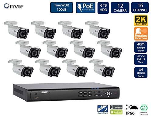 Flir Digimerge IP Security Kamera Sytem mit Dnr400P Serie 2 Festplatteneinschübe Nvr und Quad-HD-Motor 4 Mp (2K) mit Vandalismusschutz Kugelkamera (12 Einschuss mit 16-Kanal-6TB NVR) - Lorex-security-kamera