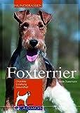 Foxterrier: Charakter, Erziehung, Gesundheit (Cadmos Hunderassen)