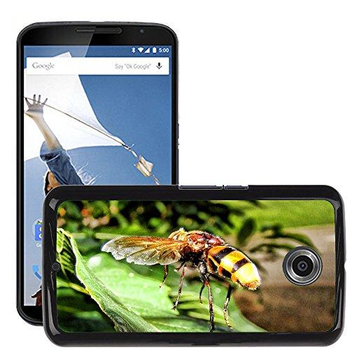 Carcasa Funda Prima Delgada SLIM Casa Case Bandera Cover Shell para // M00130125 Vespa Insect Yellow Jacket Sting // LG Google Nexus 6