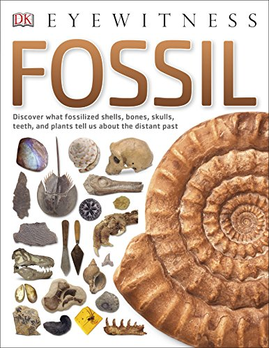 Fossil.
