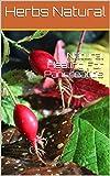 Natural Healing For Pancreatitis