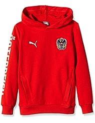Puma öfb Sweatshirt à capuche Enfant