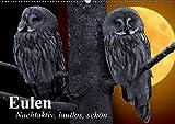 Eulen. Nachtaktiv, lautlos, schön (Wandkalender 2019 DIN A2 quer): Nachtaktive Schönheiten und lautlose Jäger (Monatskalender, 14 Seiten ) (CALVENDO Tiere)