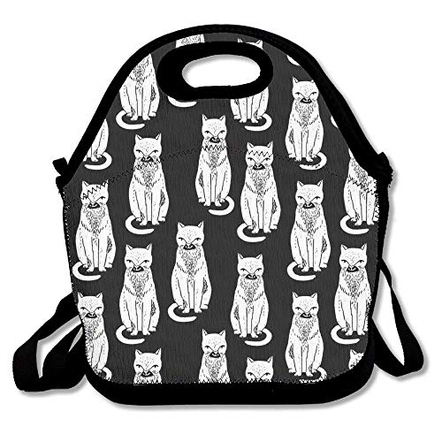 Lunch Tote Bag Bags Awesome Lunch Handbag Lunchbox Box For School Work Outdoor 11x11x5.5 Inch ()