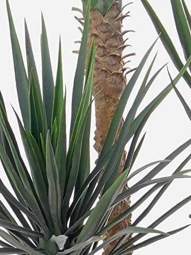 artplants Set 2 x Künstliche Yucca Rostrata Jimena, 215 Blätter, grün, 160 cm – Kunstpalme/Deko Palme