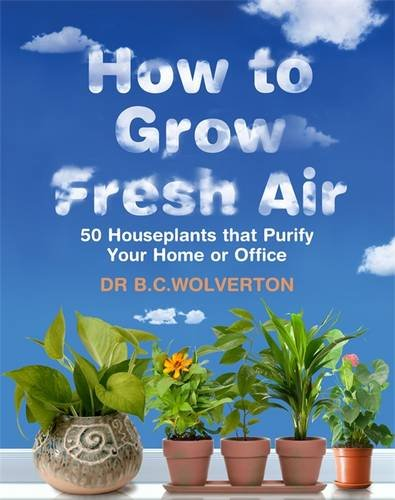 how-to-grow-fresh-air-50-houseplants-that-purify-your-home-or-office