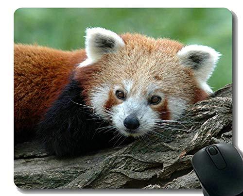 Yanteng-Mauspad mit genähtem Rand, Behandlung Riesenpanda-Rot, Mauspad, Rutschfeste Gummibasis Mousepad für Laptop, Computer