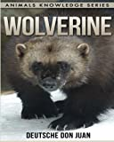 Wolverine: Beautiful Pictures & Interesting Facts Children Book About Wolverine (Animals Knowledge Series)
