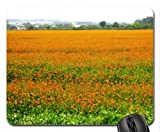 Cosmos flower fields Mouse Pad, Mousepad (Flowers Mouse Pad)