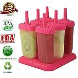 6 piezas de diseño cuadrado de helado Pop Moldes fabricante de moldes de paleta Frozen Yogurt Helado Jelly Pop Mold Popsicle fabricante del polo molde bandeja de la cacerola para Niños / hijos de las rosas